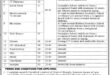 District-Headquarters-Hospital-District-Shangla-Jobs-09-June-2019