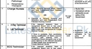 Specialized-Healthcare-and-Medical-Education-SCHME-Punjab-Jobs-09-May-2020