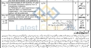 District-and-Session-Courts-Bahawalpur-Jobs-21-Aug-2020