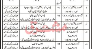 Nisar-Shaheed-School-and-College-Risalpur-Cantt-Jobs-08-Aug-2020