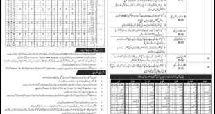 Elementary-and-Secondary-Education-Department-Azad-Jammu-Kashmir-Jobs-18-Oct-2020