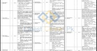 Directorate-General-Monitoring-and-Evaluation-Department-Lahore-Jobs-16-Jan-2021