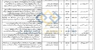 District-Health-Authority-DHA-Hafizabad-Jobs-17-Jan-2021