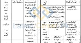 Provincial-Transport-Authority-PTA-Balochistan-Jobs-23-Jan-2021