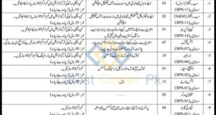 Sindh-Municipal-Services-Delivery-Program-MSDP-Karachi-Jobs-22-Jan-2021