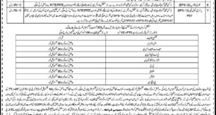 Elementary-and-Secondary-Education-Department-Hangu-Jobs-21-May-2019