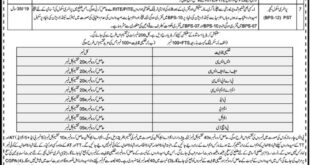 Elementary-and-Secondary-Education-Department-Lakki-Marwat-Jobs-22-May-2019