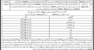Elementary-and-Secondary-Education-Department-Nowshera-Jobs-21-May-2019