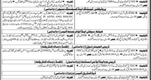 Sindh-Transmission-and-Dispatch-Company-STDC-Karachi-Jobs-03-May-2019
