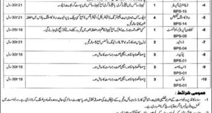 Punjab-Institute-of-Languages-and-Culture-Lahore-Jobs-15-June-2019