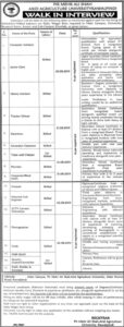 PMAS-Arid-Agriculture-University-Rawalpindi-Job-11-Aug-2019