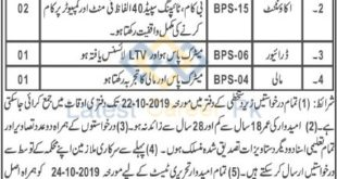 District-and-Session-Courts-Chaman-Jobs-11-Oct-2019