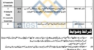 District-Judiciary-North-Waziristan-Jobs-27-Feb-2020
