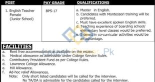 Lawrence-College-Ghora-Gali-Murree-Jobs-26-Feb-2020