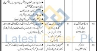 Government-of-Sindh-Planning-and-Development-Department-Karachi-Jobs-15-May-2020