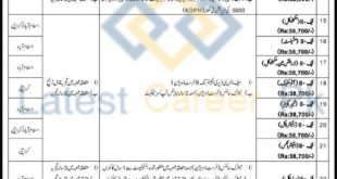 Progressive-Public-Sector-Organization-NESCOM-Pakistan-Jobs-05-July-2020