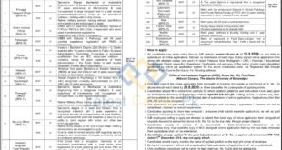 The-Islamia-University-of-Bahawalpur-IUB-Bahawalpur-Jobs-28-July-2020